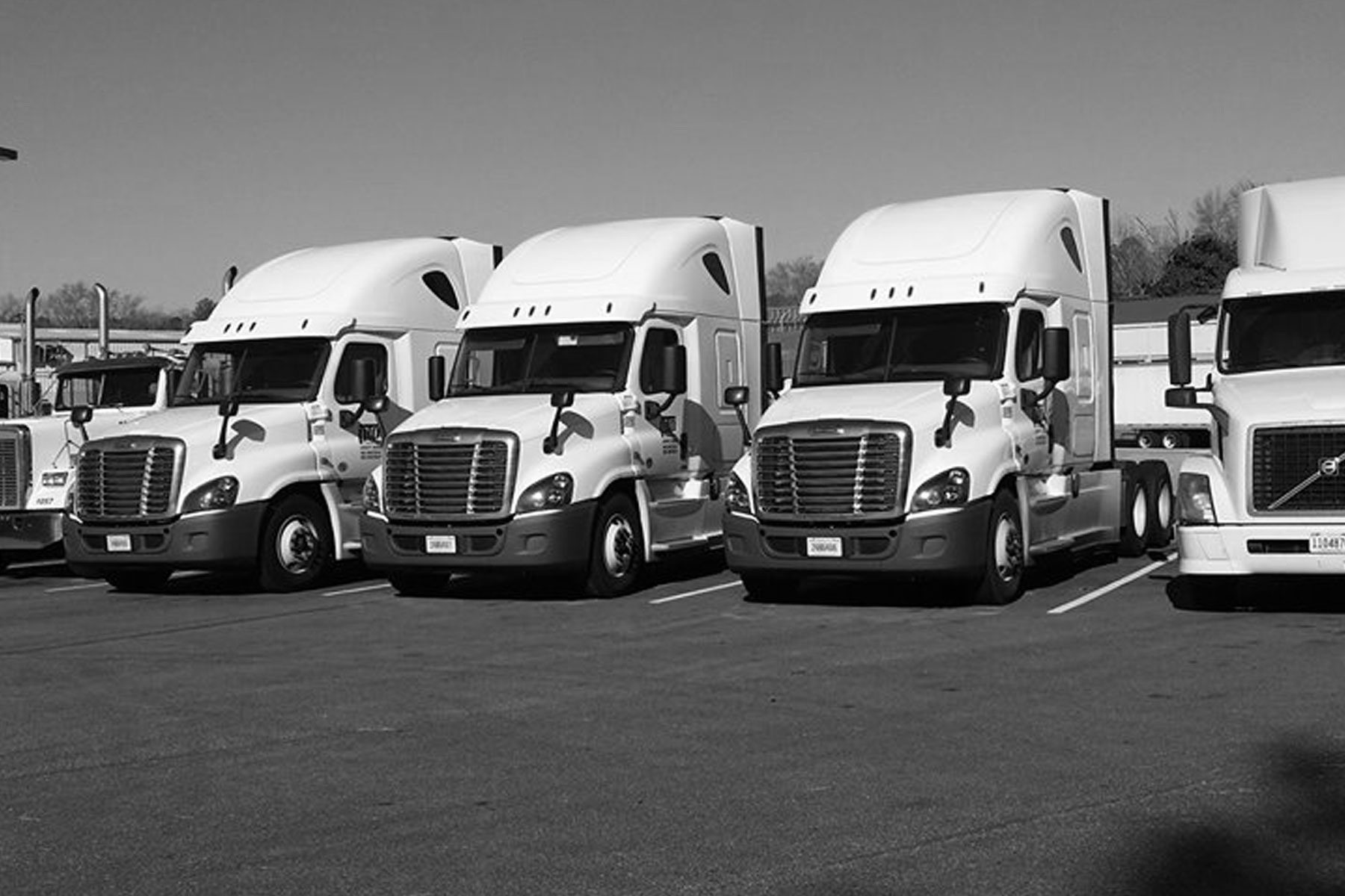 PTP Transport Freightliner Fleet
